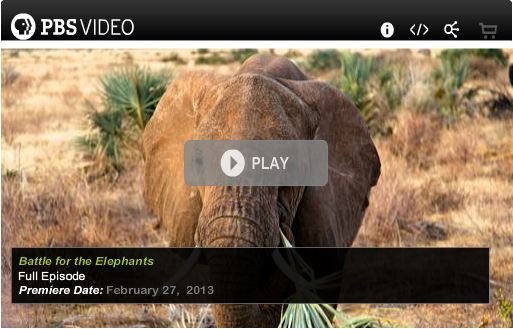 Battle_for_Elephants