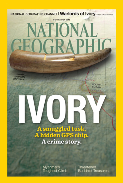 Tracking Ivory Cover